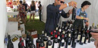 wine at taste of wasatch 2013
