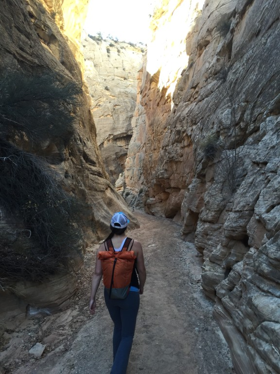 Cottonwood Canyon Narrows